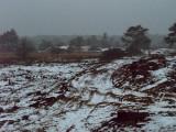 12_winterseriewaalwijk82.jpg