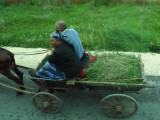 Passing a Wooden-wheeled Cart on Bulgarian Road