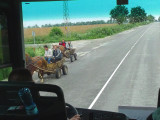 More Horse Carts on Bulgarian Road