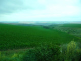 Lots of Land Under Cultivation in Bulgaria