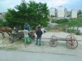 Politically Correct Name for Gypsies in Bulgaria is Roma.