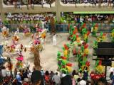Grande Rio Costumes