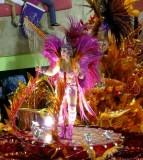 Beija-Flor Costume