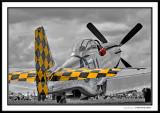 EAA Air Venture 2009