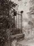Gate, Carmel Mission, California, 1999