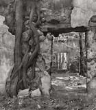 Old Church 2, Halawa Valley, Molokai 1994