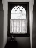 Window with Teddy Bear, Williamsburg, 1997