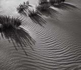 Sandscape no 4, Great Sand Dunes 2002