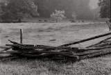 Cade's Cove, Smoky Mountains, 1992
