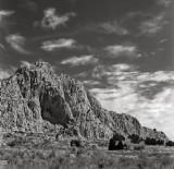 Crosses, New Mexico, 1997