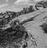 The Crags, Colorado, 1998