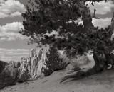 The Crags no. 2, Colorado, 1998