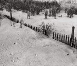 Drifted Fence Ocean City 1997.jpg