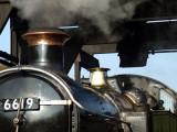 Standard gauge trains
