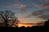Sunset_from_bedroom_7036-1.jpg