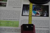 DSC_9703_N-D5k.JPG