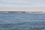 Walvis Bay and Sandwich Harbour