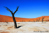 Sossusvlei and Dead Vlei
