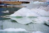 Cavell Glacier: icebergs