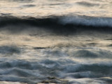 Sea in Motion Monterey, California, March 2008