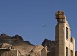 A Visitor Rhyolite, Nevada, California, April 2008