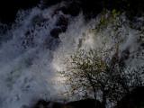 GALLERY::Yosemite Moods - Yosemite National Park - May 2008::