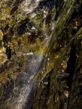 Hidden Rainbow Near Trinity Lake, August, 2007