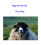 Happy Ewe Year