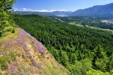 Aldrich Butte