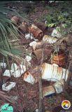 pesticide cans in Eustis sinkhole 2.jpg