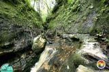 High Falls Sink Stream 2.jpg