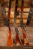Close up of Gun Trio across chest 3980