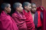 Bhutan - 11/2008