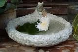 136 birdbath.jpg