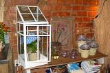 150 mini greenhouse.jpg