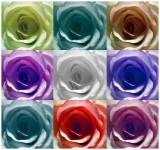 ART Modern Art Flexible action 1.jpg