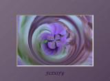 flexify 12.jpg
