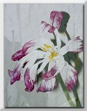 pink n white tulip textured