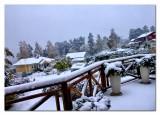 snow everywhere...