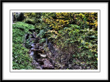 the little stream...