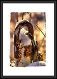 padlock in snow...