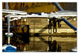 sunny winter reflections at the boat place....