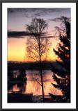 golden sunrise...