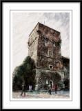 Wawel Castle  tower....