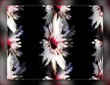 filters-102.jpg