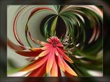 filters-119.jpg