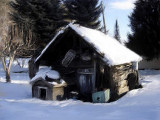 Winter shed...