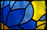 Feb. 4 - papillon