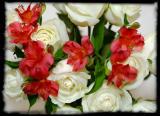 Mar. 20 - bouquet