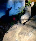 Apr 23 - me & my shadow
